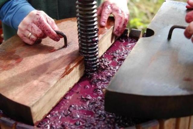 Пресс для винограда своими руками: варианты изготовления пресса для вина
